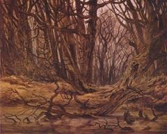 Wald im Spätherbst (Waldwasser, Herbstwald)