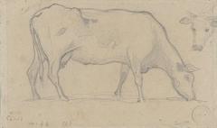 Grazende koe, rechtsboven nogmaals een koeienkop