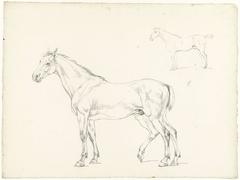 Studie van twee paarden, naar links